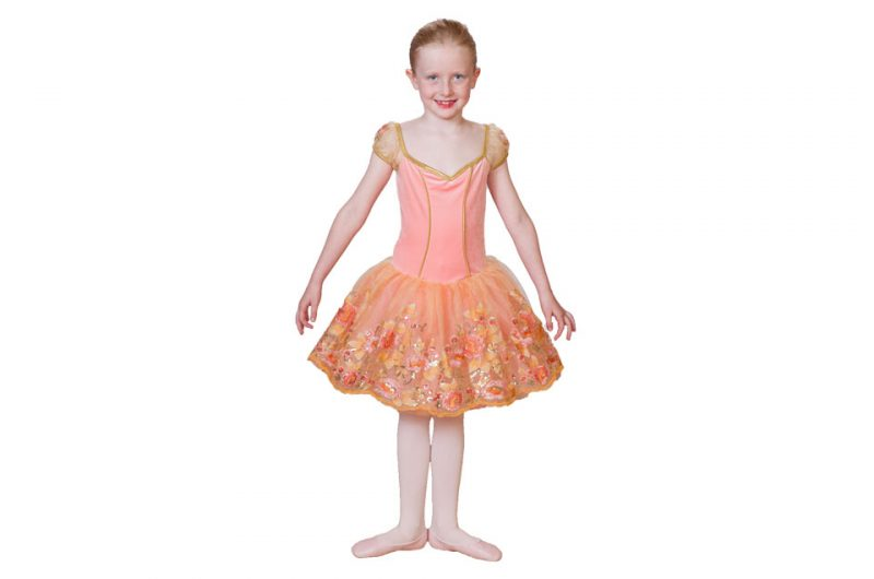 Ballet-School-of-Vermont-Dancer