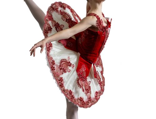 Vermont Ballet Review – Exceptional Training Program for Classical Ballet